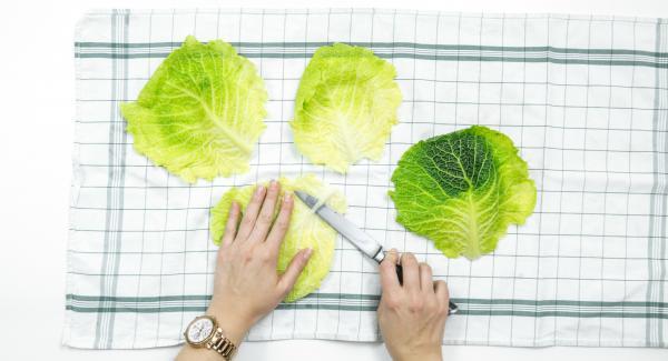 ƒStendere le foglie di verza su uno strofinaccio asciutto e farle asciugare bene, tagliare la costola centrale dura e disporvi sopra il ripieno.