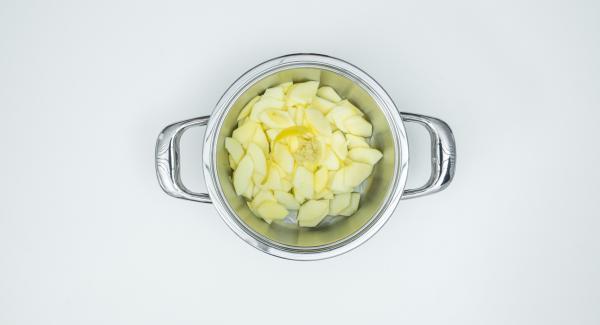 Aggiungere alle mele la scorza di limone, 2 cucchiai di succo di limone, lo zenzero e il succo di mela.
