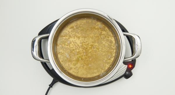 Al suono di Audiotherm, ridurre al livello 2, rosolare leggermente le cipolle, irrorarle con il vino bianco e il brodo di carne, aggiungere la foglia di alloro e i grani di pepe.