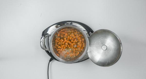 """Aggiungere le carote e il brodo vegetale e mescolare bene. Chiudere l'Unità di cottura con Secuquick. Impostare Navigenio su """"A"""". Posizionare Audiotherm sulla finestra """"soft"""" dopo aver impostato il programma """"P"""" per la cottura."""